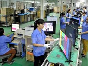 Vietnam busca elevar calidad de educación y formación vocacional