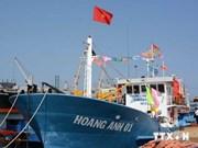 Alientan a pescadores de Quang Ngai a aferrarse al mar