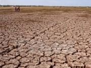 Continúan grave sequía en Altiplanicie Occidental