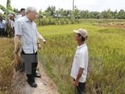 Líder partidista vietnamita revisa trabajos contra salinización en delta de Mekong