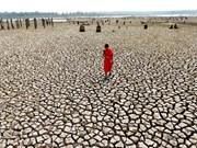 Tailandia: Sequía podría recortar 0,8 por ciento de PIB
