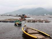 Abren líneas telefónicas directas a favor de pescadores en el Centro