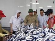 Quang Tri presta ayuda a afectados por muerte masiva de peces