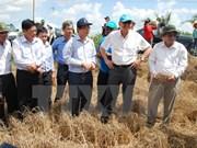 Alto funcionario de ONU examina situación de sequía en provincia vietnamita