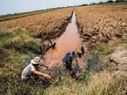 Cruz Roja de Vietnam ofrece asistencia urgente a pobladores afectados por sequía