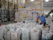 Ventas al exterior de arroz vietnamita se reducirán en segundo trimestre