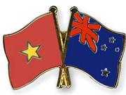 Construirán en Ciudad Ho Chi Minh puente de amistad Vietnam- Nueva Zelanda