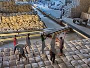 Pronostican en Vietnam exportación de arroz este año similar a 2015
