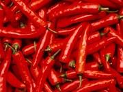 Grupo sudcoreano invierte en plantaciones de chile en VN