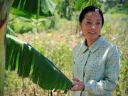 "Cinta vietnamita ""La vida de Yen"" gana Gran Premio en festival en Filipinas"