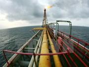Grupo petrolero de Vietnam se esfuerza por aumentar su producción anual