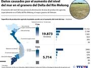 [Infografía] Daños causados por el aumento del nivel del mar en Vietnam