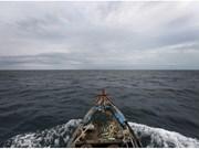 Vietnam participa en cumbre regional de pesca en Indonesia