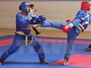 Inaugurado Sexto Festival de artes marciales de Vietnam
