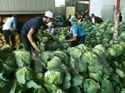 Can Tho busca cooperación en agricultura limpia con Nueva Zelanda