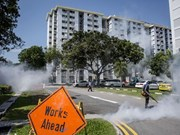 Singapur permitirá a pacientes infectados de Zika recuperarse en casa