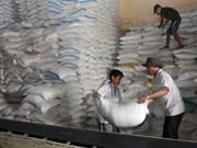 Busca Myanmar nuevos mercados receptores de arroz