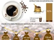 [Infografía] En alza exportación de café de Vietnam en primeros ocho meses