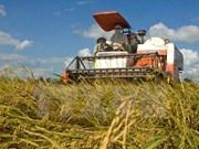 Debaten en Hanoi medidas para desarrollar sosteniblemente la agricultura