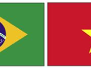 Vietnam-Brasil: Nuevas perspectivas de inversión y comercio agrícola