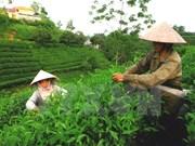 Vietnam promueve comercio e inversiones en Estados Unidos