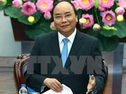 Premier urge a Bac Lieu convertir la cría de camarones en sector económico clave