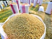 Amplía Camboya capacidades de almacenaje y secado de arroz