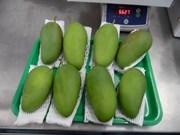 Por primera vez se vende mango vietnamita en Australia
