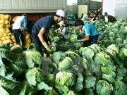 Impulsan comercio de productos agrosilvícolas y pesqueros en provincia de Vietnam