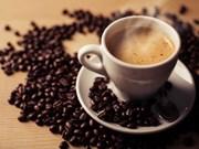 Promueven café de Vietnam en Reino Unido
