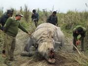 Asiste Vietnam a conferencia de CITES en Sudáfrica