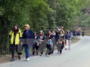 Aumenta la llegada de turistas extranjeros a Vietnam