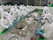 Vietnam registra aumento en exportaciones acuícolas