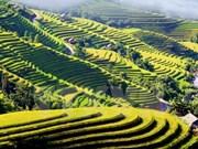 Canal televisivo alemán ARD realiza documental sobre Vietnam