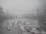 OMS: El ser humano está amenazado por la contaminación ambiental