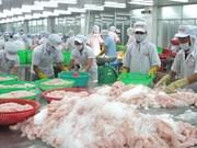 Exportadores de pescados de Vietnam enfrentan dificultades en lograr meta anual
