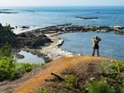 Empresa de Japón propone planificación física de isla de Vietnam