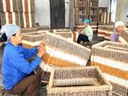 Hanoi invierte en desarrollo de zonas rurales