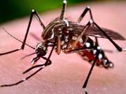 Hanoi refuerza medidas preventivas contra el Zika