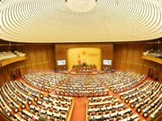 Economía y reformas legales a examen en Parlamento de Vietnam