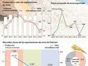 [Infografía] Exportaciones de arroz de Vietnam en primeros 10 meses