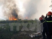 Provincia vietnamita de Bac Giang refuerza prevención contra incendios forestales