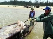 Vietnam busca medidas para enfrentar degradación de fuentes acuíferas