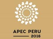 Presidente de Vietnam asistirá a Cumbre de APEC en Perú