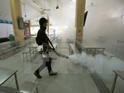 Tailandia detecta 33 nuevos casos de Zika