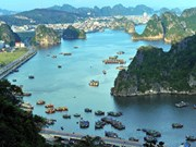 Ha Long Bay - maravilla de la naturaleza