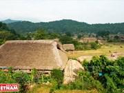 Casas con techo de paja en provincia norvietnamita