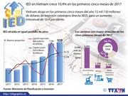 [Infografia] IED en Vietnam crece 10,4 por ciento en los primeros cinco meses de 2017