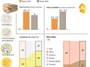 Estrategia de desarrollo de mercados para exportar arroz de Vietnam