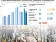 [Infografía] IPI de Vietnam registró aumento de 6,7 por ciento en primeros 8 meses de 2017